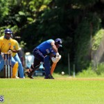 Cricket Bermuda July 8 2017 (16)