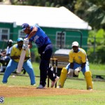 Cricket Bermuda July 8 2017 (9)