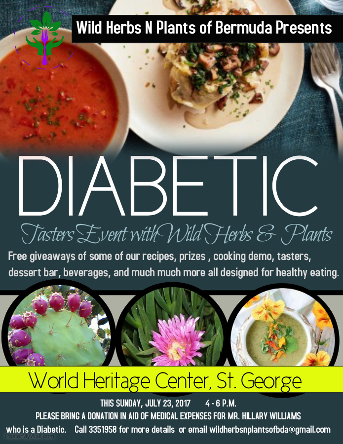 Diabetic Tasters Event Bermuda July 2017