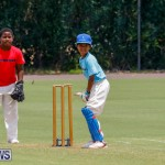 Mini Cup Match Bermuda, July 27 2017_5026