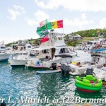 106-Go Down Berries concert Bermuda 2017 (106)