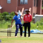 Cricket Western County Cup Bermuda Aug 12 2017 (1)