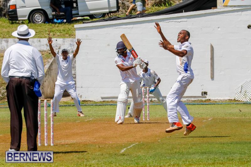 Eastern-County-Cricket-Bermuda-August-19-2017_4324