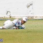 Eastern County Cricket Bermuda, August 19 2017_4548