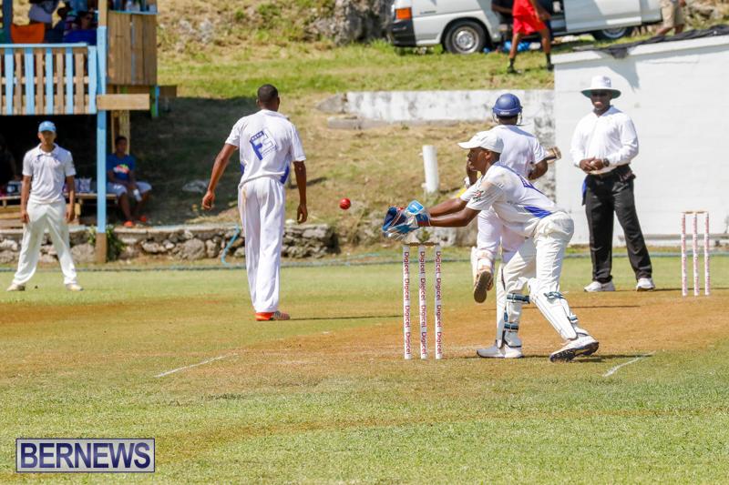 Eastern-County-Cricket-Bermuda-August-19-2017_4591