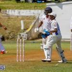 Eastern County Cricket Bermuda, August 19 2017_4602