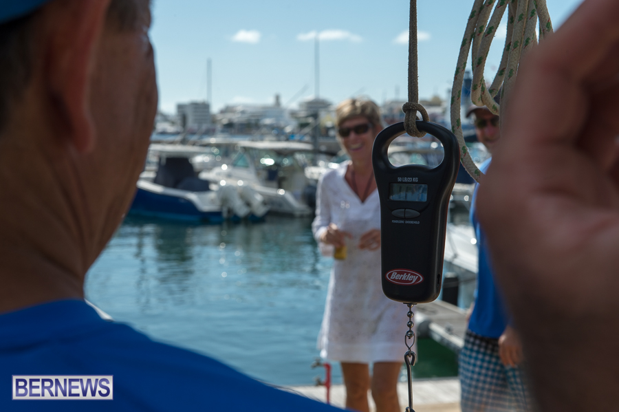 Makin-Waves-Lobster-Tournament-Bermuda-2014-13
