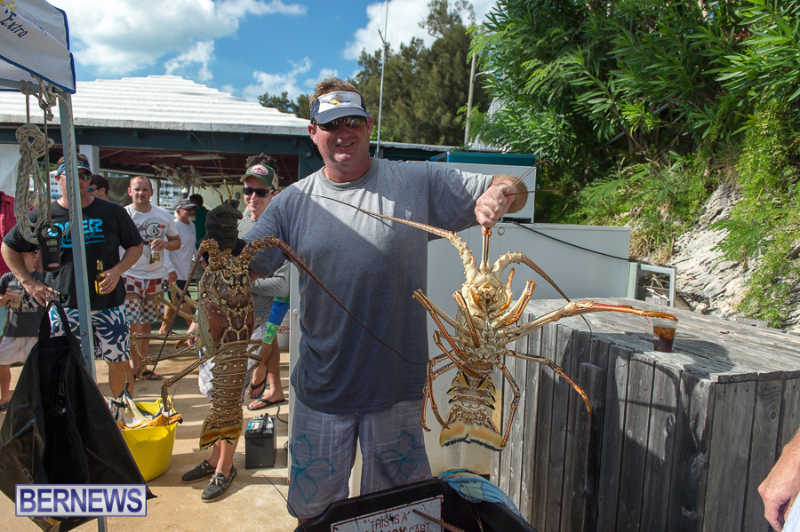 Makin-Waves-Lobster-Tournament-Bermuda-2014-25
