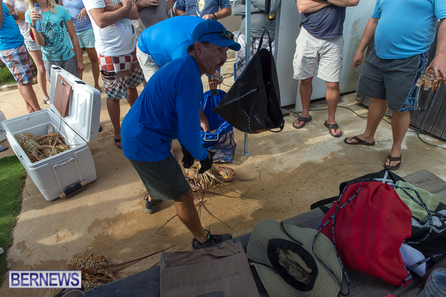 Makin-Waves-Lobster-Tournament-Bermuda-2014-31