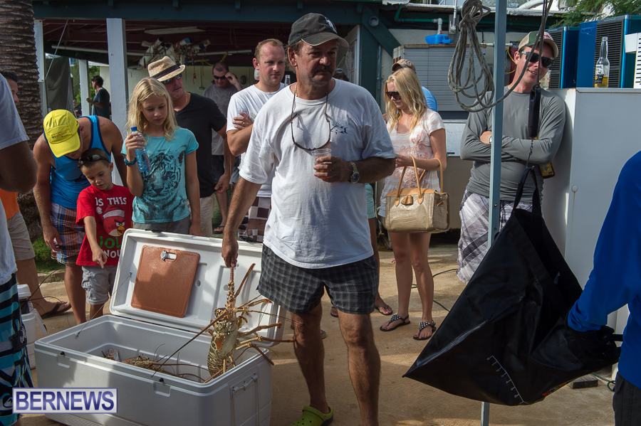 Makin-Waves-Lobster-Tournament-Bermuda-2014-33
