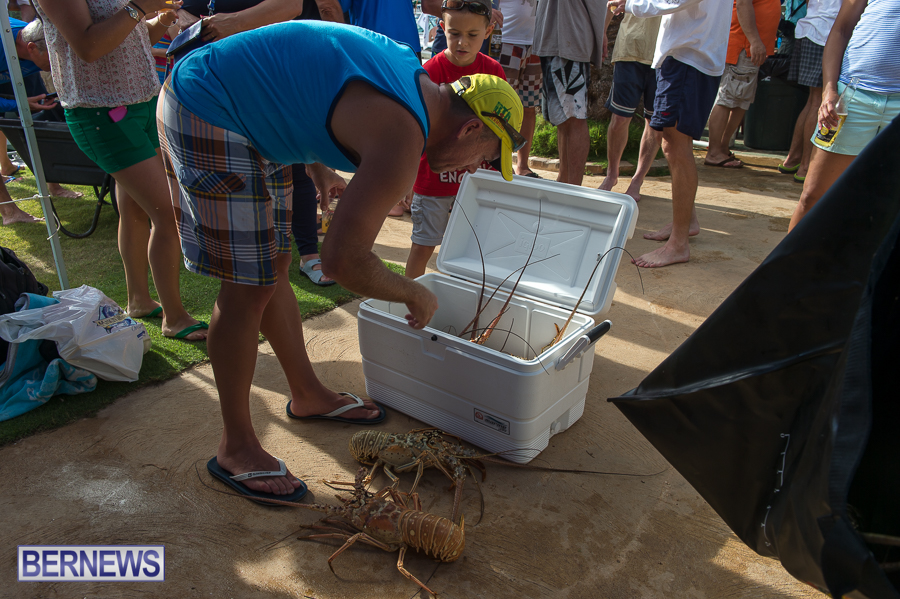 Makin-Waves-Lobster-Tournament-Bermuda-2014-39