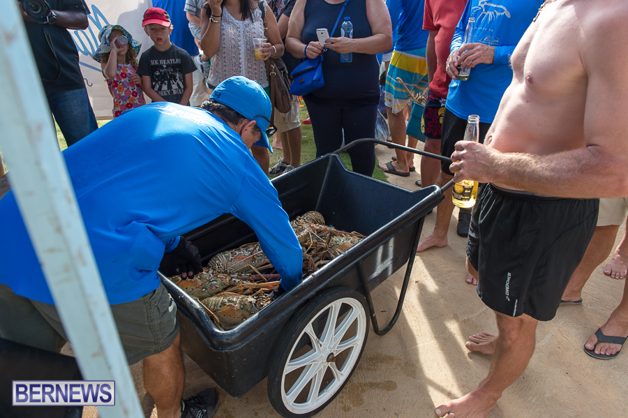 Makin-Waves-Lobster-Tournament-Bermuda-2014-43