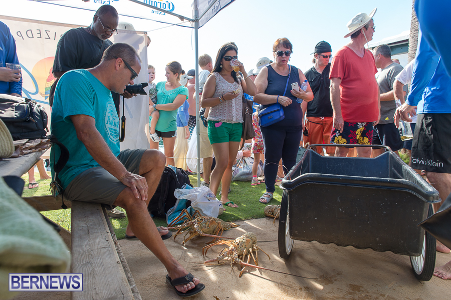 Makin-Waves-Lobster-Tournament-Bermuda-2014-46