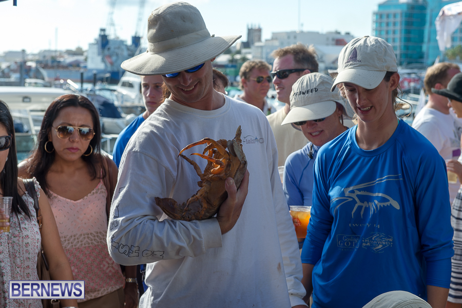 Makin-Waves-Lobster-Tournament-Bermuda-2014-48