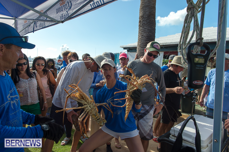 Makin-Waves-Lobster-Tournament-Bermuda-2014-51