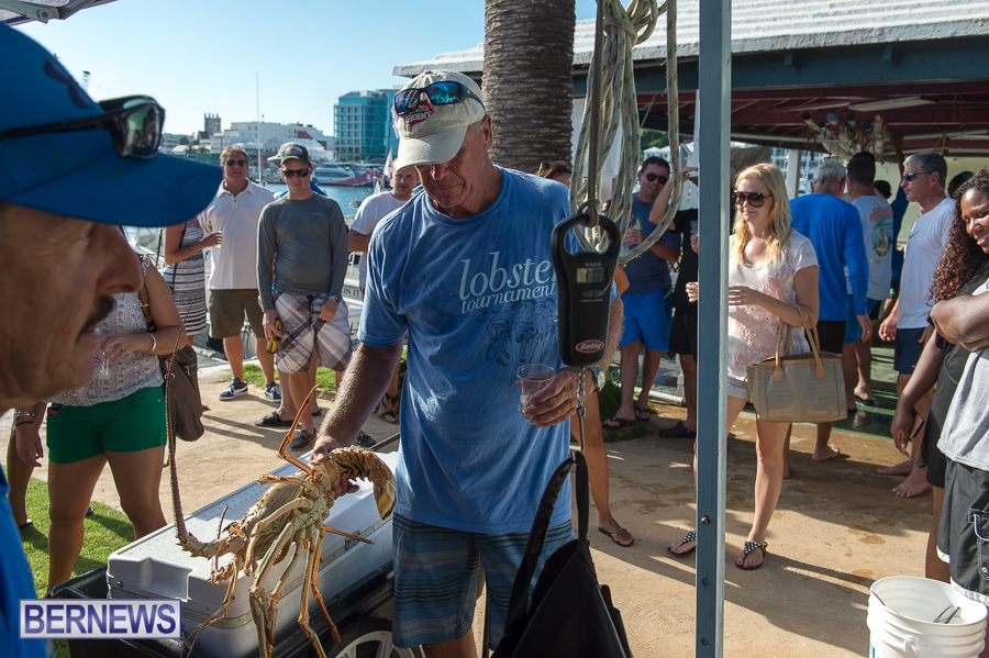 Makin-Waves-Lobster-Tournament-Bermuda-2014-55