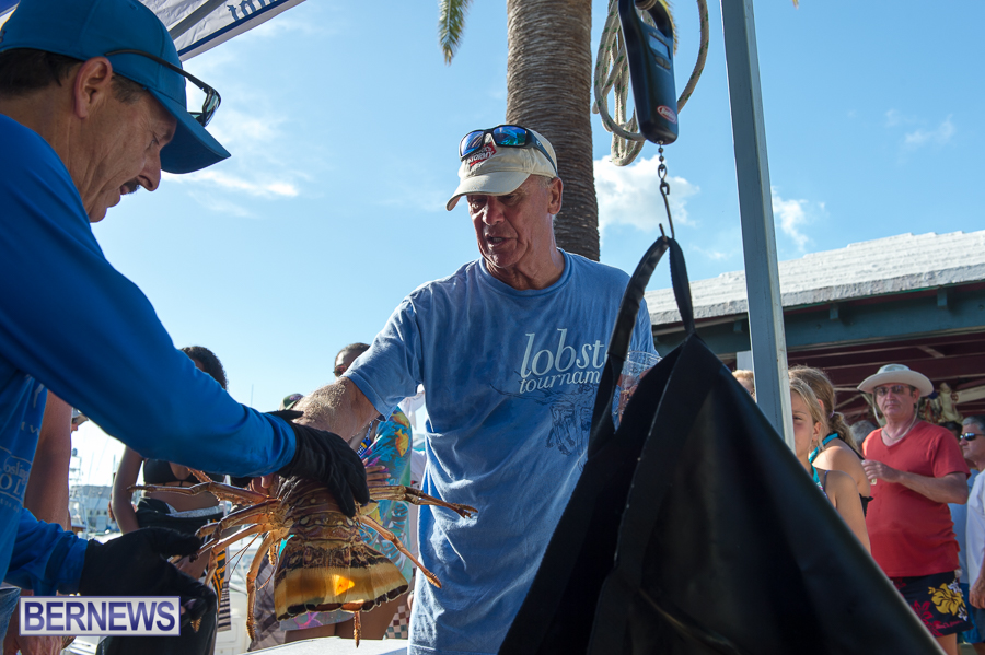Makin-Waves-Lobster-Tournament-Bermuda-2014-56