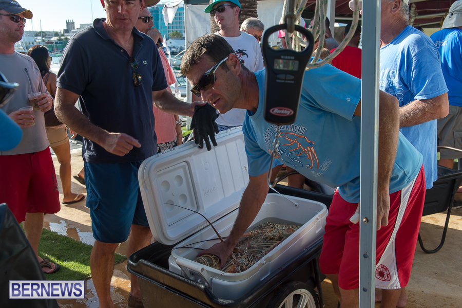 Makin-Waves-Lobster-Tournament-Bermuda-2014-60