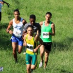 BNAA Chaplin Bay Cross Country  Bermuda Sept 23 2017 (12)