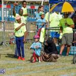 Bermuda Police Gymkhana, September 30 2017_6230