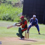 Cricket Bermuda September 10 2017 (1)
