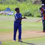 Cricket Bermuda September 10 2017 (16)