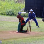 Cricket Bermuda September 10 2017 (18)