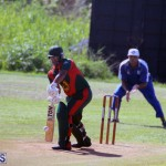 Cricket Bermuda September 10 2017 (9)