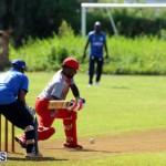 Cricket Champions of Champions Bermuda Sept 24 2017 (3)