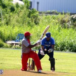 Cricket Champions of Champions Bermuda Sept 24 2017 (5)
