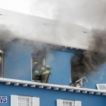Robertson's Drug Store Fire Bermuda, September 2 2017_7746