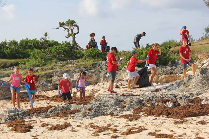 Saltus CleanUp at John Smith's Bay Bermuda Sept 2017 (1)