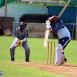 cricket Bermuda September 2017 (12)