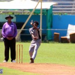 cricket Bermuda September 2017 (7)