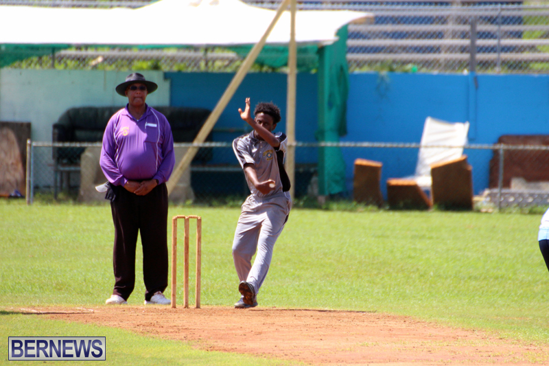 cricket-Bermuda-September-2017-7