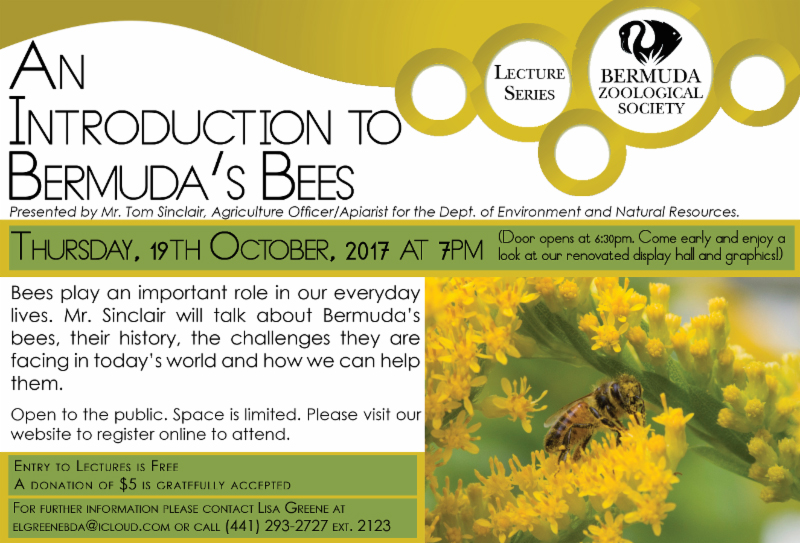 An Introduction to Bermuda's Bees October 2017
