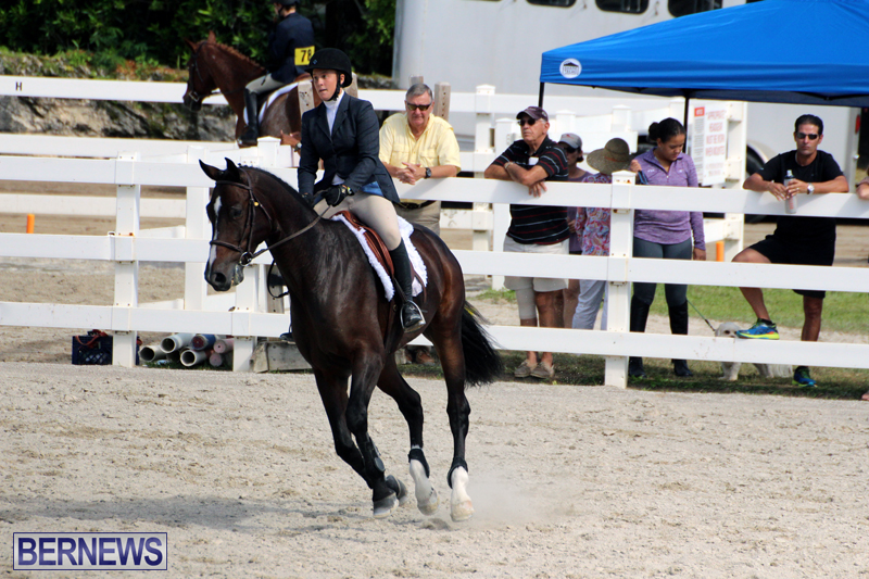 BHPA-Fall-Show-2017-Bermuda-Oct-25-2017-1
