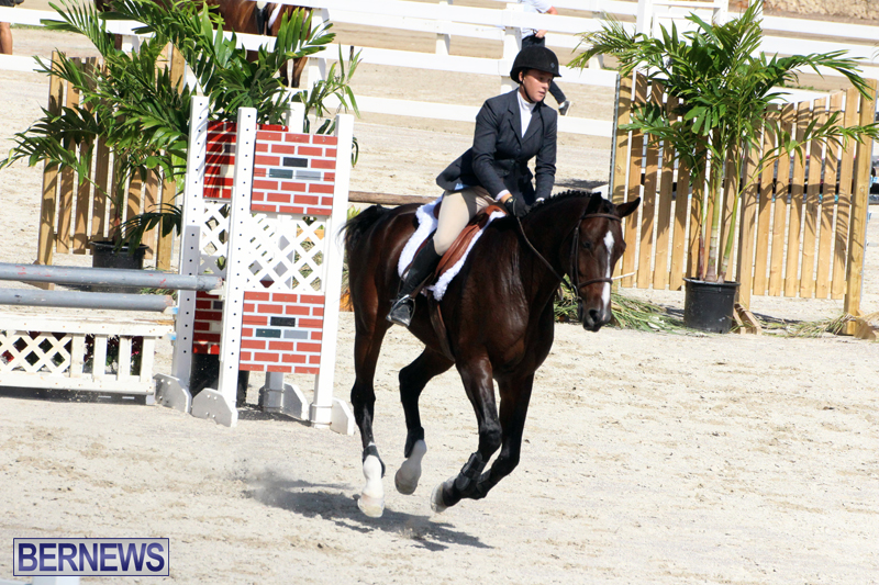 BHPA-Fall-Show-2017-Bermuda-Oct-25-2017-12