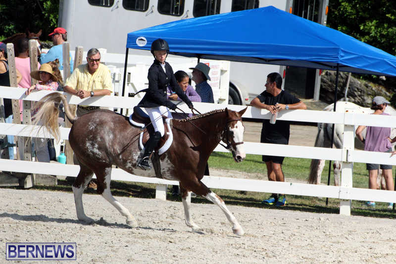 BHPA-Fall-Show-2017-Bermuda-Oct-25-2017-13