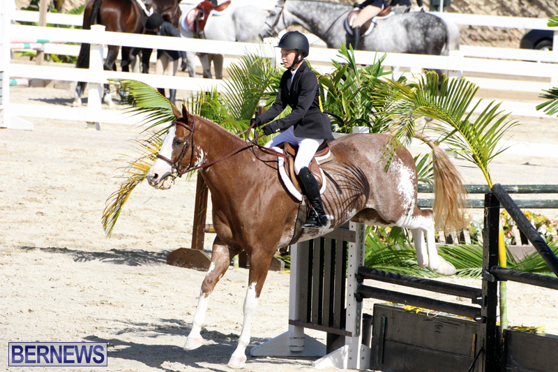 BHPA-Fall-Show-2017-Bermuda-Oct-25-2017-14