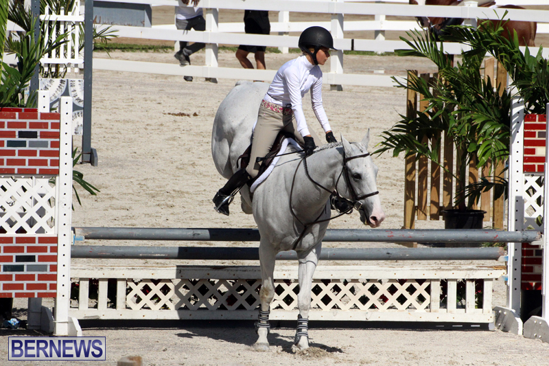 BHPA-Fall-Show-2017-Bermuda-Oct-25-2017-18