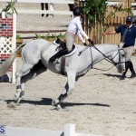 BHPA Fall Show 2017 Bermuda Oct 25 2017 (19)