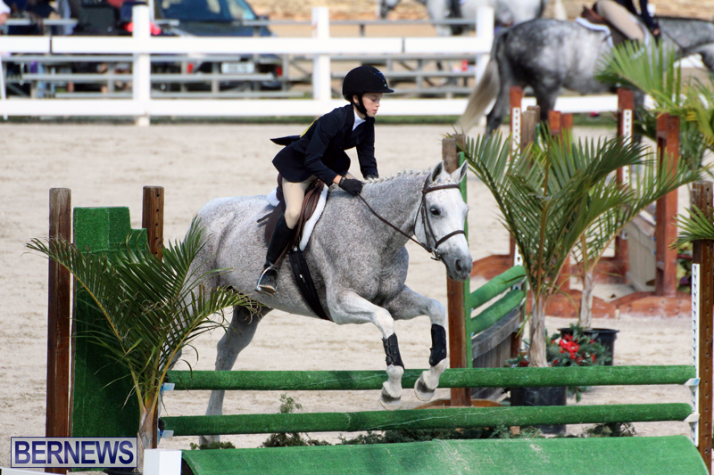 BHPA-Fall-Show-2017-Bermuda-Oct-25-2017-6