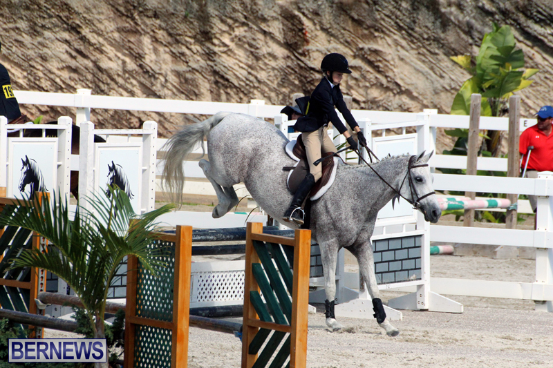 BHPA-Fall-Show-2017-Bermuda-Oct-25-2017-7