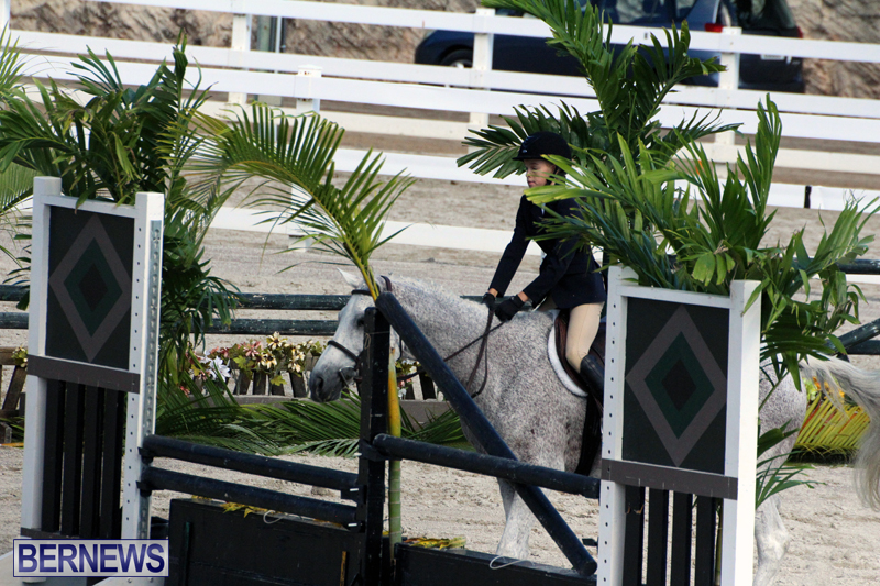 BHPA-Fall-Show-2017-Bermuda-Oct-25-2017-9