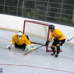 Ball Hockey Bermuda Oct 25 2017 (4)