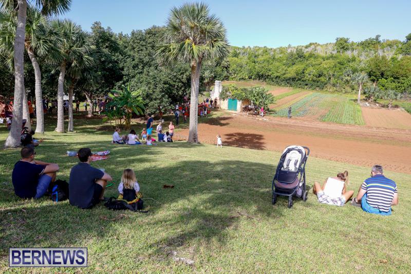 Bermuda-National-Trust-FarmFest-October-28-2017_00421