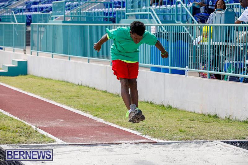 Bermuda-Special-Olympics-October-14-2017_6231