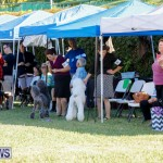 International Dog Show Bermuda, October 21 2017_8082