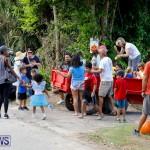 J&J Produce Pumpkin Picking Bermuda, October 14 2017_6027